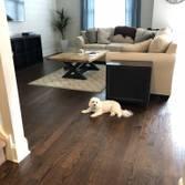 Victor Hardwood Floors Pa Read Reviews Get A Bid Buildzoom