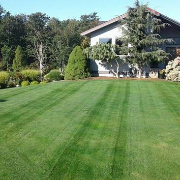 North County Lawn Care Svs Photos