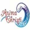 Anima Christi Cleaning Services